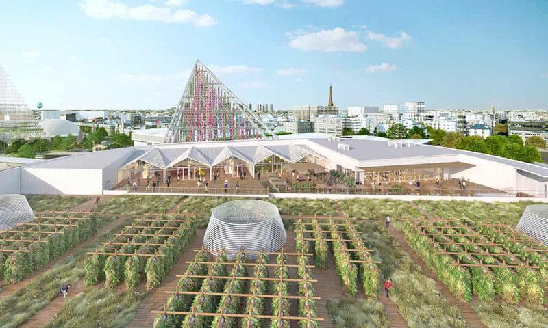 افتتاح بزرگ ترین مزرعه هوایی جهان ، 14 هزار مترمربع مزرعه شهری در آسمان