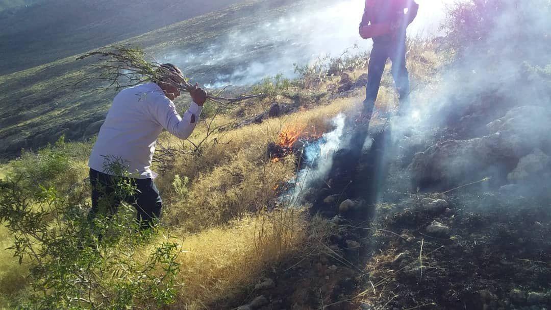 خبرنگاران تشکل زیست محیطی: اغلب آتش سوزی های فارس به علت سهل انگاری در مرتعداری رخ می دهد